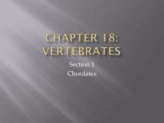 Chapter 18: Vertebrates