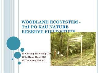 WOODLAND ECOSYSTEM -  TAI PO KAU NATURE RESERVE FIELD STUDY