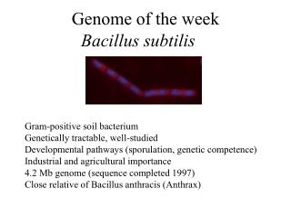 Genome of the week
