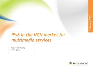 IPv6 In the NGN market for multimedia services