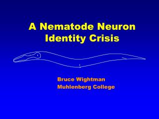 A Nematode Neuron Identity Crisis