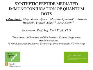 SYNTHETIC PEPTIDE MEDIATED IMMUNOCONJUGATION OF QUANTUM DOTS
