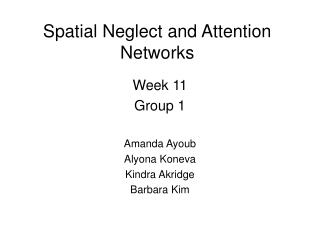 Spatial Neglect and Attention Networks