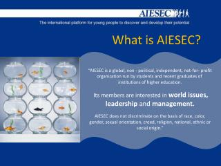 What is AIESEC?