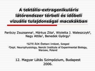 A tektális-extragenikuláris látórendszer térbeli és időbeli vizuális tulajdonságai macskákban
