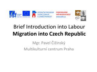 Brief Introduction into Labo u r  Migration into Czech Republic