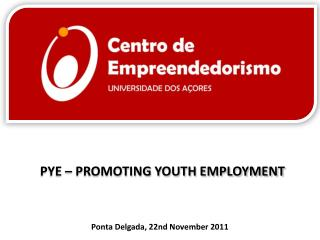 PYE – PROMOTING YOUTH EMPLOYMENT