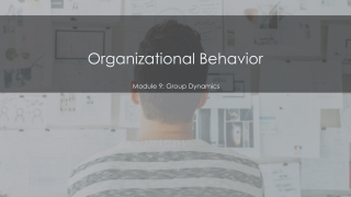 FORMAL GROUP ROLES