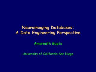 Neuroimaging Databases: A Data Engineering Perspective