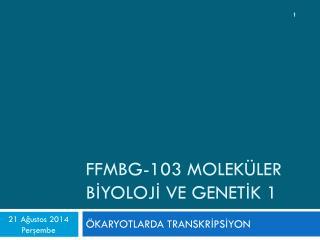 FFMBG-103 MOLEKÜLER BİYOLOJİ VE GENETİK 1