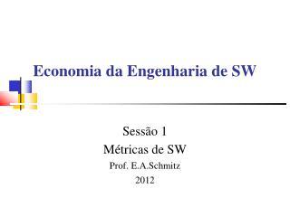 Economia da Engenharia de SW