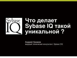 Что делает  Sybase IQ  такой уникальной  ?