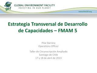 Estrategia Transversal de Desarrollo de Capacidades – FMAM 5