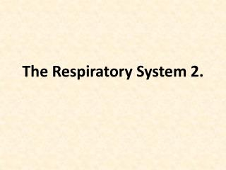 The Respiratory System 2.
