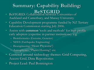 Summary: Capability Building: BeSTGRID