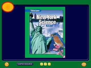 Chapter:  Vertebrate Animals