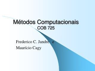 M�todos Computacionais COB 725