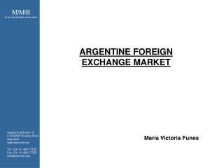 ARGENTINE FOREIGN  EXCHANGE MARKET
