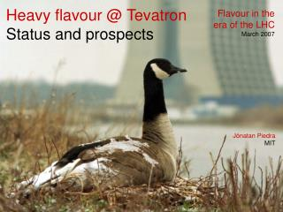 Heavy flavour @ Tevatron Status and prospects