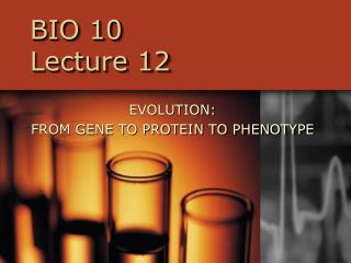 BIO 10  Lecture 12
