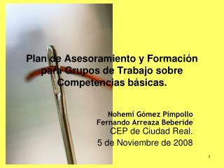 Plan de Asesoramiento y Formación para Grupos de Trabajo sobre Competencias básicas.