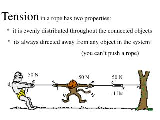Tension in a rope has two properties: *  it is evenly distributed throughout the connected objects