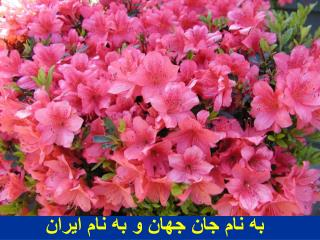 به نام جان جهان و به نام ایران