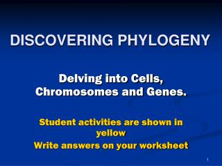 DISCOVERING PHYLOGENY