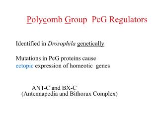 P oly c omb  G roup  PcG Regulators