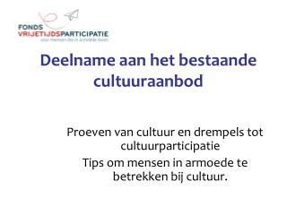 Deelname aan het bestaande cultuuraanbod