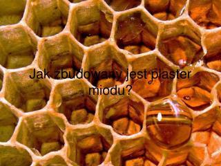 Jak zbudowany jest plaster miodu?