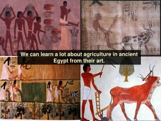 We can learn a lot about agriculture in ancient Egypt from their art.