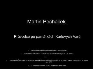 Martin Pecháček