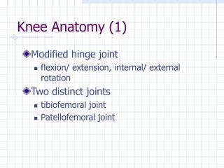 Knee Anatomy (1)