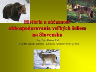 História a súčasnosť obhospodarovania veľkých šeliem  na Slovensku