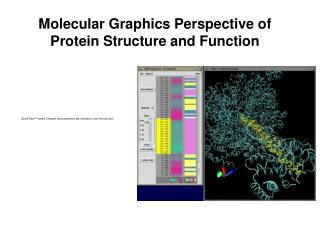 Molecular Graphics Perspective of Protein Structure and Function
