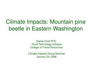 Climate Impacts: Mountain pine beetle in Eastern Washington