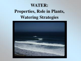 WATER: Properties, Role in Plants,  Watering Strategies