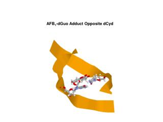 AFB 1 -dGuo Adduct Opposite dCyd