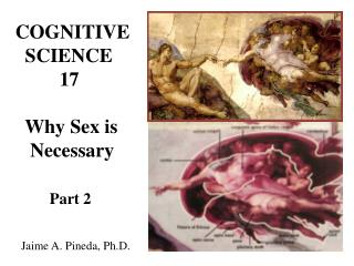 COGNITIVE   SCIENCE          17   Why Sex is    Necessary Part 2   Jaime A. Pineda, Ph.D.