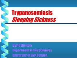Trypanosomiasis Sleeping Sickness