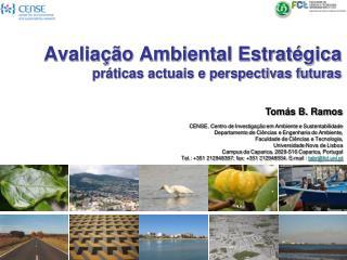 Avalia��o Ambiental Estrat�gica pr�ticas actuais e perspectivas futuras