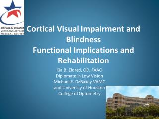 Cortical Visual Impairment and  Blindness Functional Implications and Rehabilitation