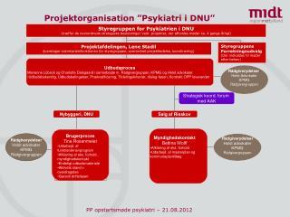 "Projektorganisation ""Psykiatri i DNU"""