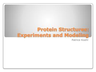 Protein Structures: Experiments and Modeling