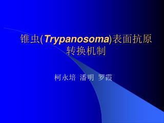 锥虫 ( Trypanosoma ) 表面抗原 转换机制