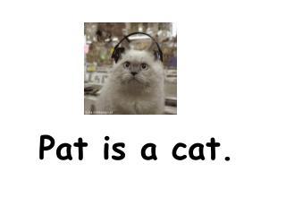 Pat is a cat.