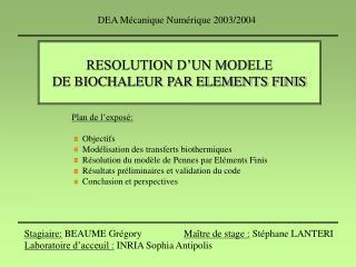 RESOLUTION D'UN MODELE  DE BIOCHALEUR PAR ELEMENTS FINIS