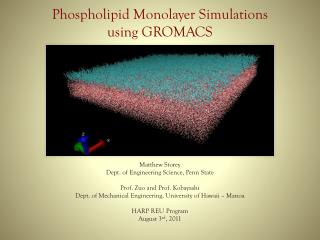 Phospholipid Monolayer Simulations using GROMACS
