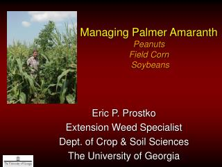 Managing Palmer Amaranth Peanuts Field Corn  Soybeans